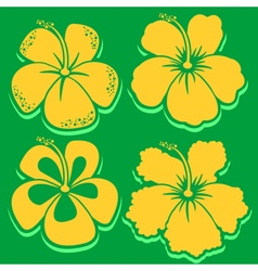 Hibiscus collection in green vector