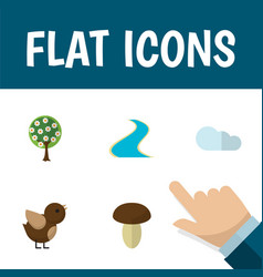 Flat icon bio set of tributary champignon vector