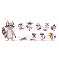 Raccoon animal wild mammal cute smile playing vector