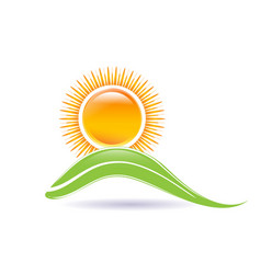 sun and leaf icon vector image