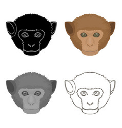 Monkey icon in cartoon style isolated on white vector
