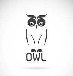 images of owl design vector image
