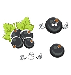 Black currant berry cartoon character vector image vector image