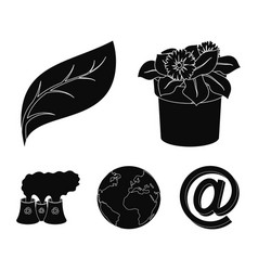 a processing plant flowers in a pot a green leaf vector image