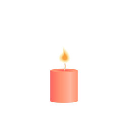 burning candle decoration for christmas party vector image