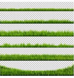 grass border big collection vector image