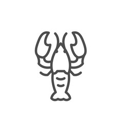 lobster line outline modern icon vector image
