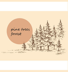 Pine forest background hand drawn nature landscape vector