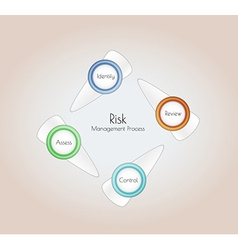 risk management vector image