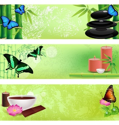 Set of spa backgrounds vector image
