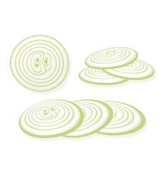 Sliced onion isolated on white background rings vector