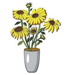 Sunflower in vase on white vector