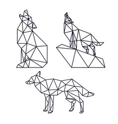 Wolf animal low poly vector