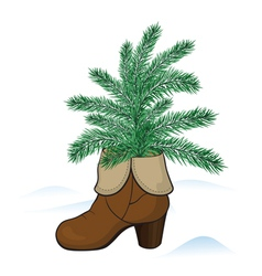 Fir tree in the boot vector image vector image