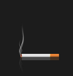 cigarette with smoke isolated on black background vector image