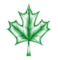 decorative ornament maple leaf vector image