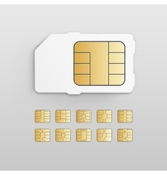 Mobile Cellular Phone Sim Card Chip Set vector image
