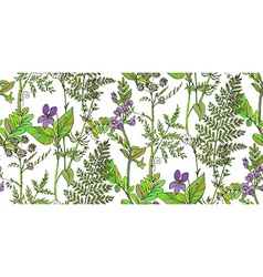 Seamless pattern of herbs and flowers vector image