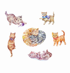 Set of watercolor kittens cute pets vector