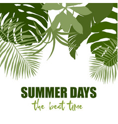 Top border composed plain green tropical leaves vector