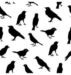 Birds Silhouettes Seamless Pattern Background vector image vector image