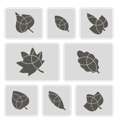 monochrome icons with leaves vector image vector image
