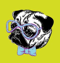 a cute muzzle dog pug dog vector image vector image