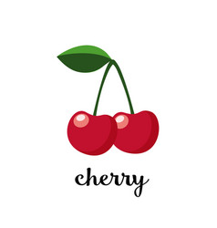 couple of cherries with leaf isolated icon vector image
