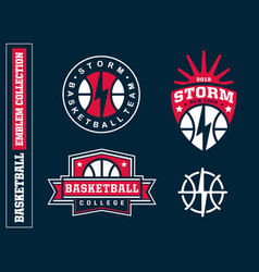 modern professional basketball logo set for sport vector image