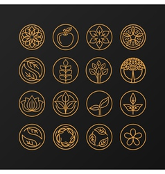 nature symbols - concept for organic shop vector image