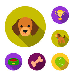 Pet dog flat icons in set collection for design vector