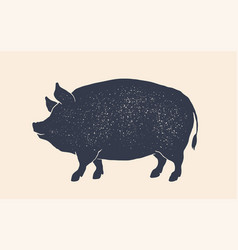 pork pig vintage retro print silhouette pig vector image