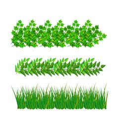 Samples of green leaves in format vector