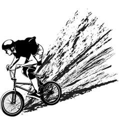 bmx biker vector image