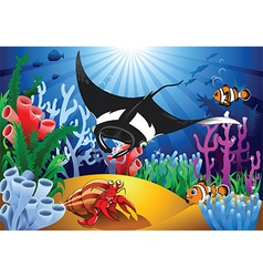 Cartoon sealife background vector image