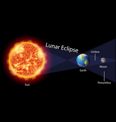 Diagram showing lunar eclipse with earth and sun vector