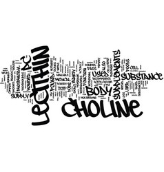 Lecithin and choline text background word cloud vector