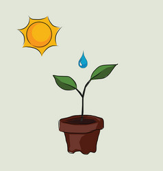 planting process in pots with sun and water drop vector image
