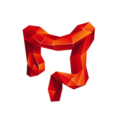 Red low poly human colon on a white background vector