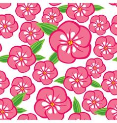 flower phlox vector image vector image