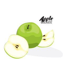 cartoon apple ripe green fruit vegetarian vector image