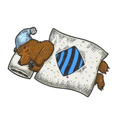 cartoon sleeping bear sketch engraving vector image