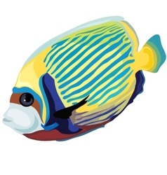 Yellow and blue striped tropical fish isolated vector