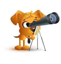 Yellow fun dog teacher looking through telescope vector