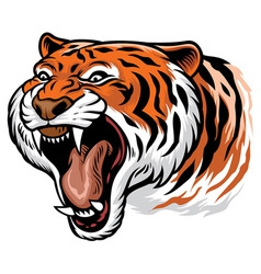roaring angry tiger vector image vector image