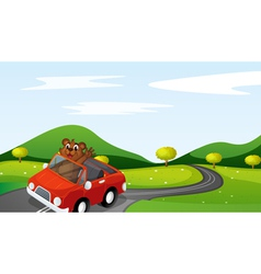 a tiger cub in a car vector image