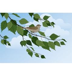 bird on a branch vector image