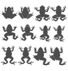 set with tree and river frogs vector image
