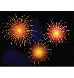 firework explosion vector image