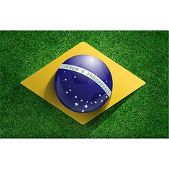 Soccer ball with brazilian flag on soccer field vector image vector image